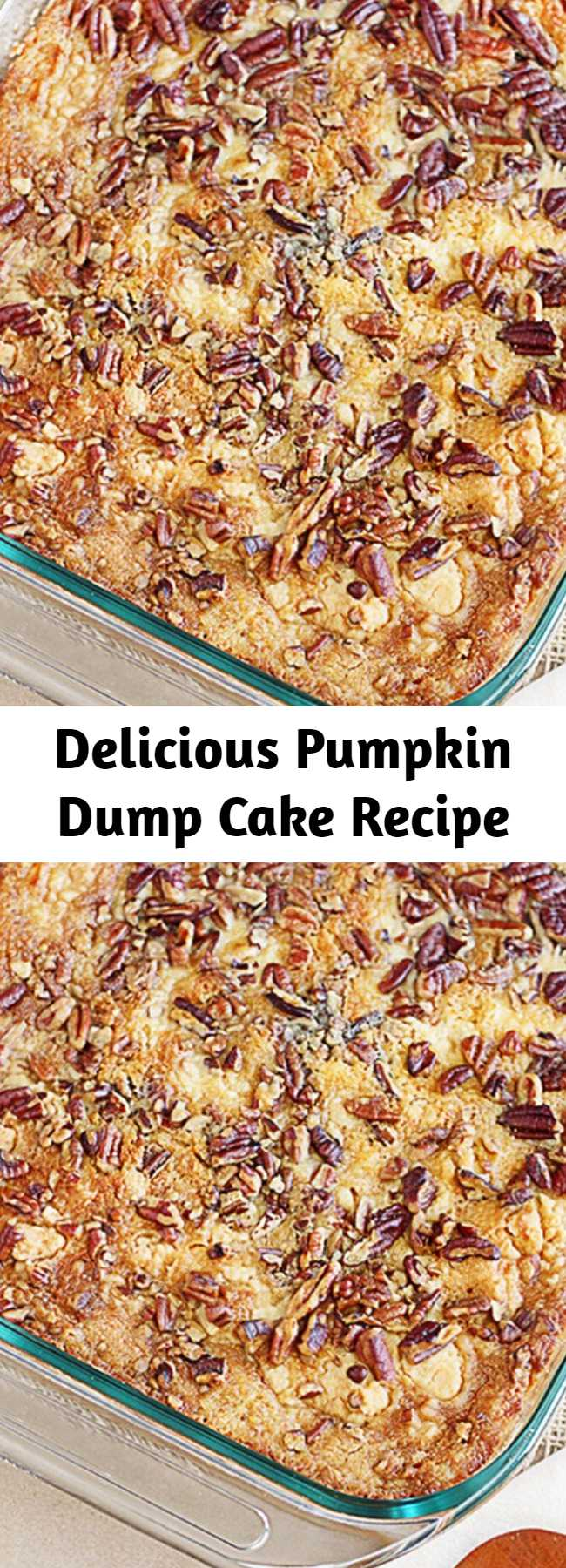 Delicious Pumpkin Dump Cake Recipe - This recipe is a sure fire win for all of you pumpkin lovers!  Yellow cake mix, pumpkin, butter and pecans are the ingredients that make this Pumpkin Dump Cake a favorite — and ready under an hour! The name is exactly how the recipe comes together — by 'dumping' the ingredients into a 13×9 cake pan.  After baking, add a dollop of whip cream and enjoy this heavenly delight!