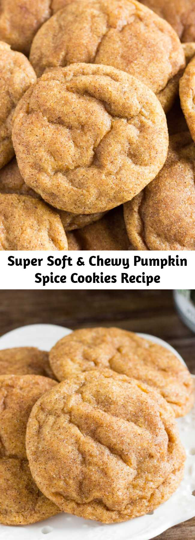 Super Soft & Chewy Pumpkin Spice Cookies Recipe - These pumpkin spice cookies are soft, chewy and perfect for fall. They're filled with flavor thanks to the pumpkin, vanilla extract, & fall spices. Then they're rolled in cinnamon sugar for a delicious coating that'll remind you of snickerdoodles.