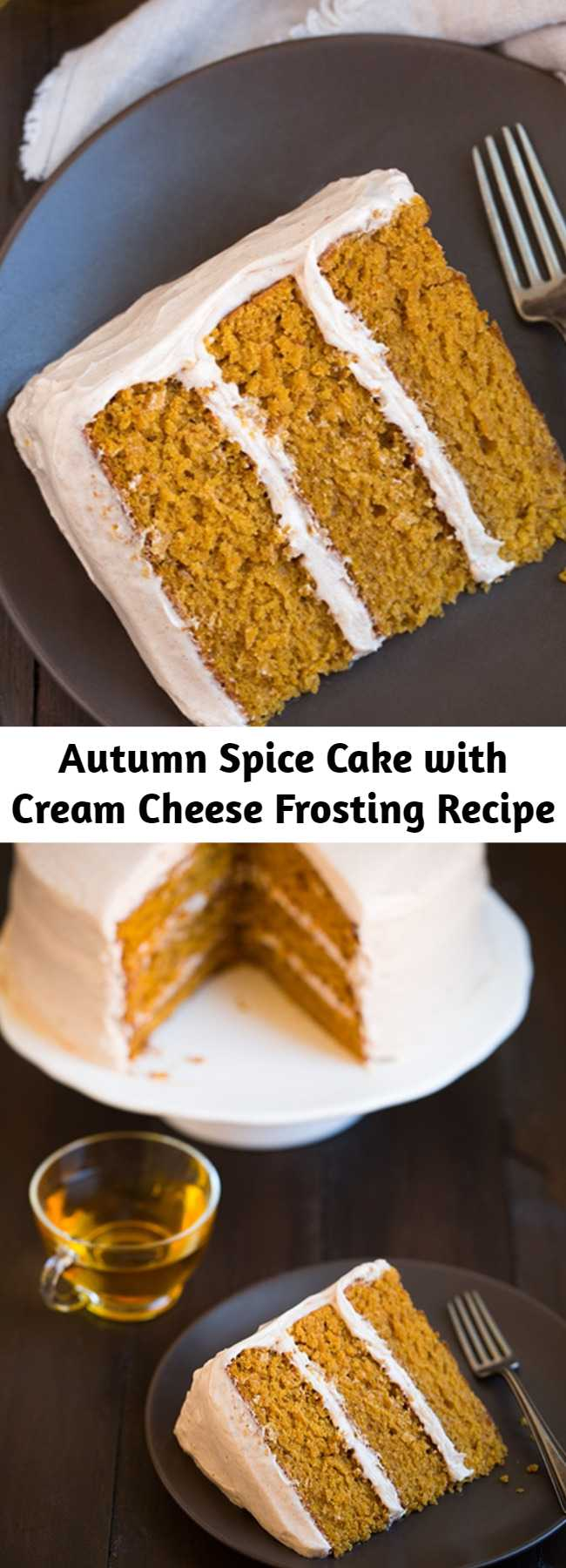 Autumn Spice Cake with Cream Cheese Frosting Recipe - This is one of my all time favorite fall cakes! It's perfectly moist and brimming with lots of those sweet autumn spices. It has a tender crumb and so much flavor in every bite. No one can resist a slice!