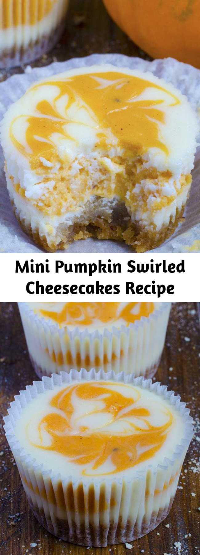 Mini Pumpkin Swirled Cheesecakes Recipe - I always adore sweet cheesecake bites but with pumpkin I got more than I expect! These gorgeous Mini Pumpkin Swirled Cheesecakes are the best homemade treat to satisfy your fall flavor cravings. Perfectly swirled and spiced for a delicious pumpkin dessert!